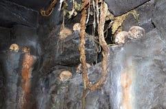 Reinado de Skull Island de Kong Imagen de archivo