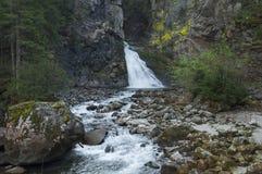 Reinbachfalle siklawa & x28; Riva& x27; s waterfall& x29; przy campo tures Zdjęcia Stock