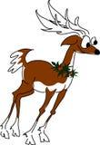 Reindeer 1 stock photos