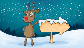 A reindeer Stock Images