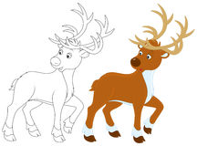 Reindeer royalty free illustration