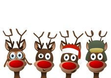 Free Reindeer Stock Photo - 62663970
