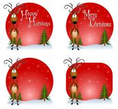 Reindeer Backgrounds Stock Photography