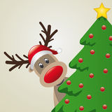 Reindeer behind christmas tree Stock Images