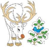 Reindeer and bird. White Reindeer talking to Blue Bird Royalty Free Stock Photos