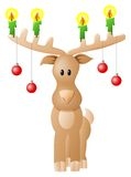 Reindeer with candles and Christmas baubles Royalty Free Stock Photos
