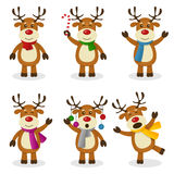 Reindeer Cartoon Christmas Set. Collection of six funny cartoon reindeer characters in different positions and expressions, isolated on white background. Eps Royalty Free Stock Images