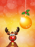 Reindeer cartoon Stock Photos
