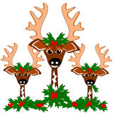 Reindeer cheer Royalty Free Stock Images