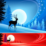 Reindeer ' Christmas Background ' Stock Photo