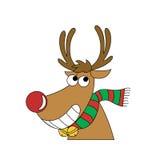 Reindeer. Christmas is coming, reindeer is coming Stock Photos