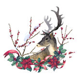 Reindeer and christmas decoration Royalty Free Stock Photo