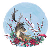 Reindeer and christmas decoration Stock Photos