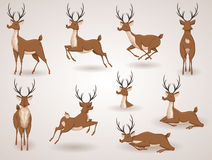 Reindeer. Christmas icon set. Moving deer collection. Holiday vector illustration Stock Photo