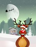 Reindeer at Christmas. Illustration of reindeer at Christmas Royalty Free Stock Photos