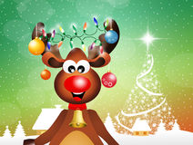 Reindeer at Christmas Royalty Free Stock Photo