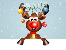 Reindeer at Christmas Stock Photography
