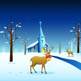 Reindeer in Christmas Night Royalty Free Stock Photography