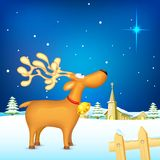 Reindeer in Christmas night Royalty Free Stock Photos