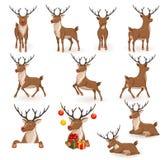 Reindeer Christmas Set Royalty Free Stock Images