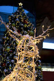 Reindeer and Christmas Tree. Reindeer and a giant christmas tree in background stock images