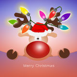 Reindeer with colorful lights Stock Images