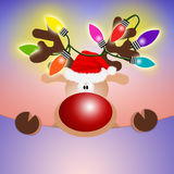 Reindeer with colorful lights Stock Image