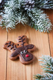 Reindeer cookie Royalty Free Stock Photos