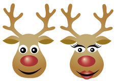 Reindeer couple Royalty Free Stock Image