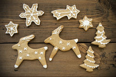 Reindeer Couple with Stars Stock Photo