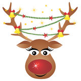 Reindeer with decoration Stock Image