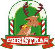 Reindeer Deer Stag Buck Christmas Royalty Free Stock Photo