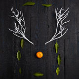 Reindeer Face made of Tangerine and Winter Branches. Minimal Christmas Concept. Flat Lay Royalty Free Stock Image