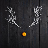 Reindeer Face made of Tangerine and Winter Branches. Minimal Christmas Concept. Flat Lay Royalty Free Stock Photography