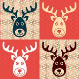 Reindeer faces Stock Photo