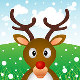Reindeer in forest Royalty Free Stock Images