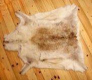 Reindeer fur skin whole wood Stock Image