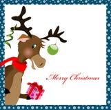 Reindeer with gift box Stock Photos