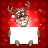 Reindeer Happy Christmas Smile Stock Photography