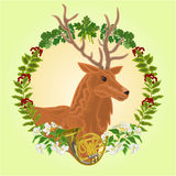 Reindeer head  hunting theme  Stock Image