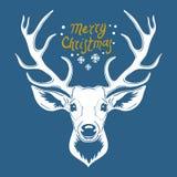Reindeer head isolated on blue background, vector illustration vector illustration