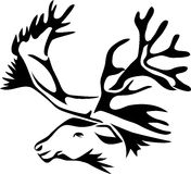 Reindeer head. Stylized black and white illustration Royalty Free Stock Images
