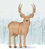Reindeer illustration Royalty Free Stock Photos