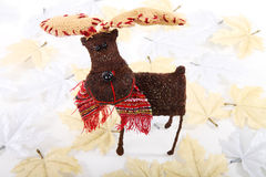 Reindeer And Leaves Stock Photos