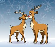 Reindeer love Stock Photography