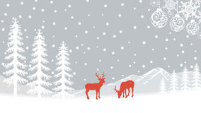Reindeer in Nature - Gray Royalty Free Stock Image