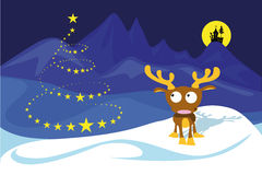 Reindeer on the north pole Royalty Free Stock Photo