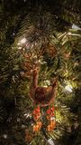 Reindeer Ornament Hanging from Tree. Gold sparkly reindeer ornament hanging from a Christmas tree Stock Photo