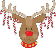 Reindeer Ornaments. A smiling reindeer with a red nose and a red collar, has candy canes hanging from his antlers Royalty Free Stock Images