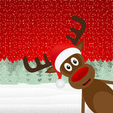 Reindeer peeking side Royalty Free Stock Photography